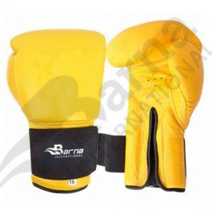 Boxing Gloves   BI – 607